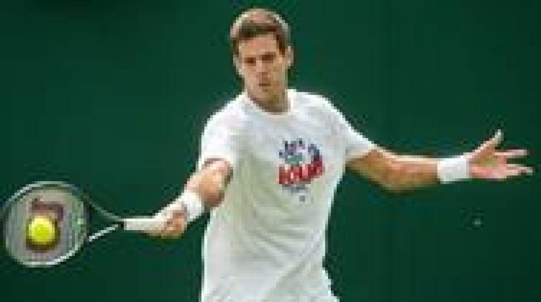 Del Potro quiere seguir avanzando en Wimbledon