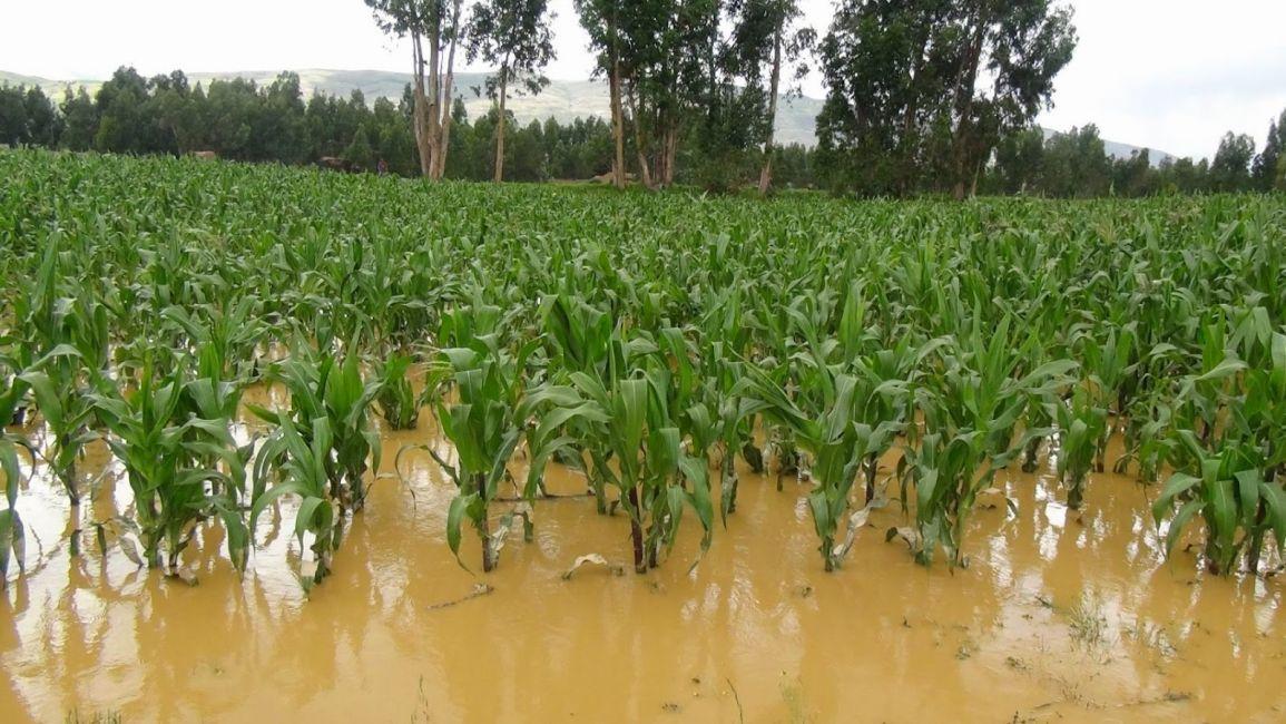 El Gobierno avanzará con el pedido de emergencia agropecuaria