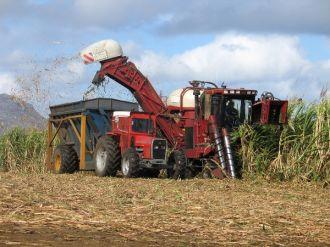 La zafra alcanzó en Tucumán 1,29 millón de toneladas de azúcar