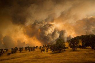 Más de 9 mil bomberos luchan contra el mayor incendio de California