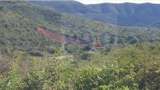 Deforestan laderas del cerro al ingreso a la Ciudad