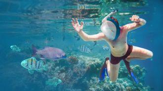 Un casco hace posible la realidad virtual submarina